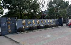 东颢制衣杨市总厂
